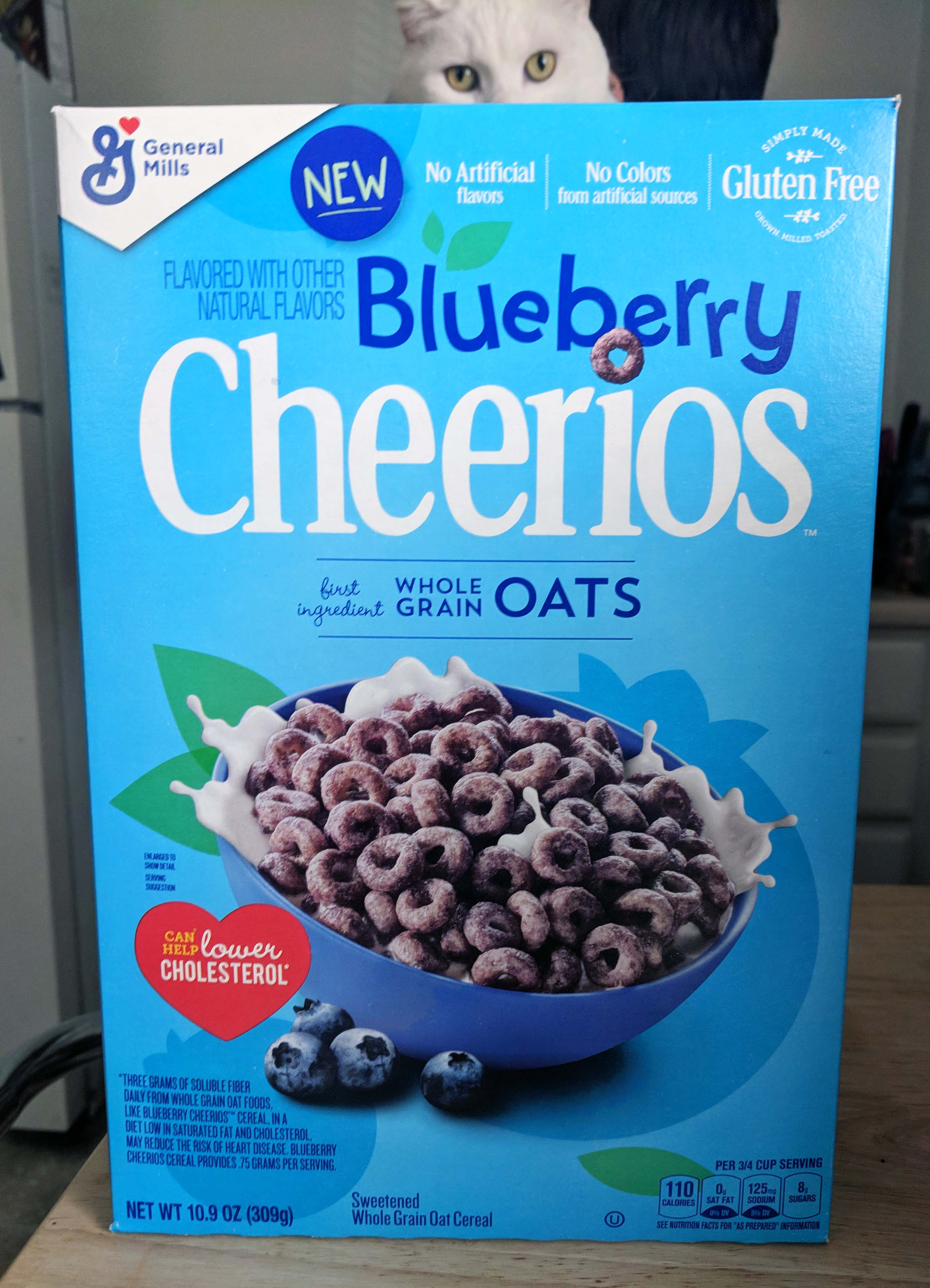 General Mills New Blueberry Cheerios Review Cereal Box